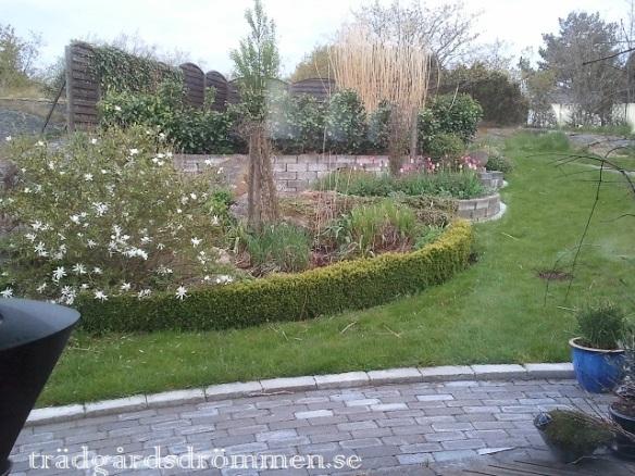 Min trädgård 2012 ...