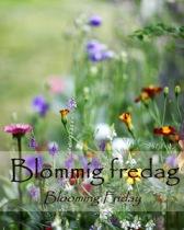 1-Blommig fredag