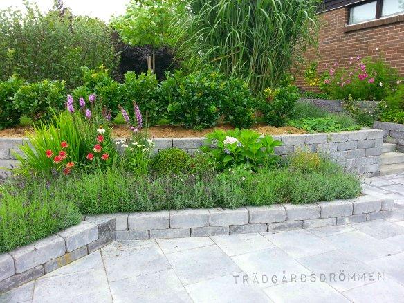 Vilken trädgårdstil är du?